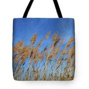 Marsh In The Wind Tote Bag