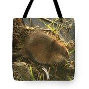 Marsh Life Tote Bag