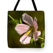 Marsh Mallow Tote Bag