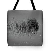 Marsh Reflection Tote Bag