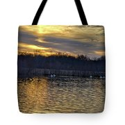 Marsh Ripple Pond Tote Bag