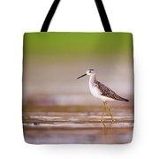Marsh Sandpiper Tringa Stagnatilis Tote Bag