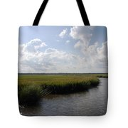 Marsh Scene Charleston Sc II Tote Bag