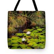Marsh Waterlilies  Tote Bag