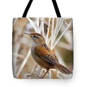 Marsh Wren II Tote Bag