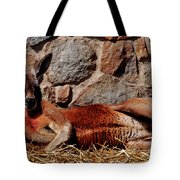 Marsupial Centerfold Tote Bag by Lori Tambakis