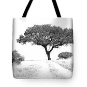 Marula Tree Tote Bag