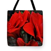 Mary M. Tote Bag
