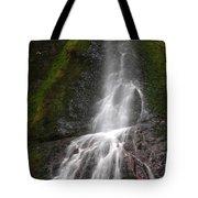Marymere Falls 2 Tote Bag