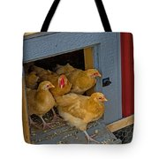 Aunt Mary's Chickens Tote Bag