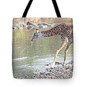 Masai Giraffe Drinking Tote Bag