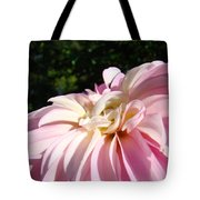 Master Gardener Pink Dahlia Flower Garden Art Prints Canvas Baslee Troutman Tote Bag