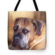 Mastiff Portrait Tote Bag by Carol Cavalaris