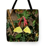 Matched Pair Of Sulfur Butterflies Tote Bag