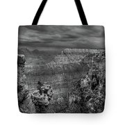 Mather Point B/w Tote Bag