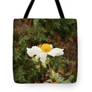 Matilija Poppy I Tote Bag