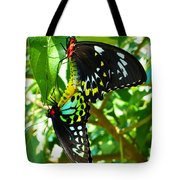 Mating Butterflies Tote Bag
