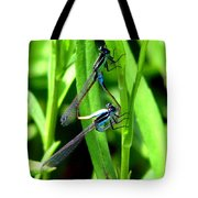 Mating Damselflies Tote Bag