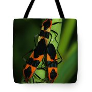 Mating Milkweed Bugs Tote Bag by April Wietrecki Green