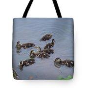 Maturing Ducklings Tote Bag