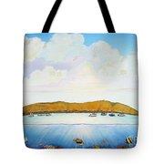 Maui Molokini Magic Tote Bag
