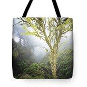 Maui Moss Tree Tote Bag