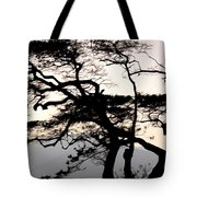 Maui Windy Tree Tote Bag