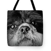 Max - A Shih Tzu Portrait Tote Bag