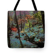 Maxfield Parrish Moment Tote Bag