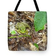 May I Help You Tote Bag