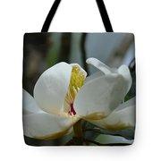 May Magnolia 2 Tote Bag