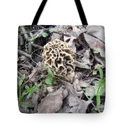 May Morel Mushroom Tote Bag