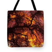 May One Sunset Tote Bag