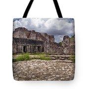 Mayan Ruins 1 Tote Bag