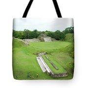 Mayan World Tote Bag
