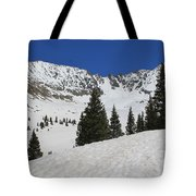 Mayflower Gulch Winter Tote Bag