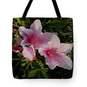 Maymont Flowers Tote Bag