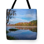 Mayor's Pond, Autumn, #1 Tote Bag