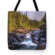 Mcdonald Creek Falls Tote Bag