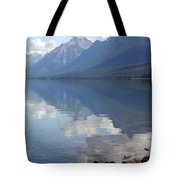 Mcdonald Reflection Tote Bag