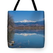 Mcintosh Lake Reflections Tote Bag