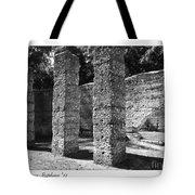 Mcintosh Sugar Mill Tabby Ruins 1825  Tote Bag