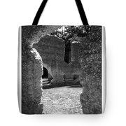 Mcintosh Sugar Mill Tabby Ruins  Tote Bag