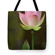 Pink Lotus And A Bud Tote Bag