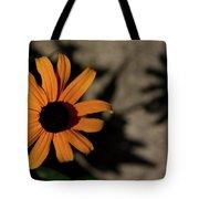 Me N My Shadow Tote Bag