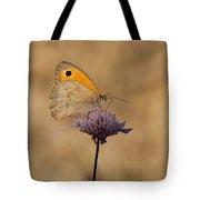 Meadow Brown Butterfly Tote Bag