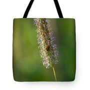Meadow Foxtail Tote Bag