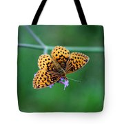 Meadow Fritillary Butterfly 2015 Tote Bag