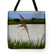 Meadow Grass Tote Bag