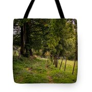 Meadow Grass Path Tote Bag